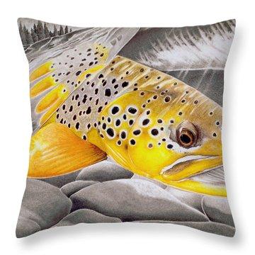 Salmon Throw Pillows