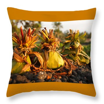 Hookupu At Sunset Throw Pillow by Denise Bird