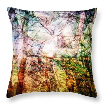 Throw Pillow featuring the mixed media Hoosier Country Opus 1 by Sandy MacGowan