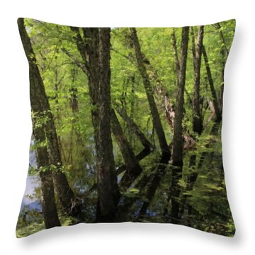 Hoosier Everglade Throw Pillow