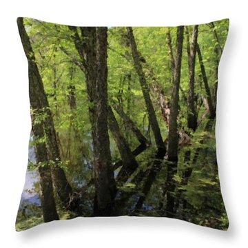 Hoosier Everglade Throw Pillow by Scott Kingery