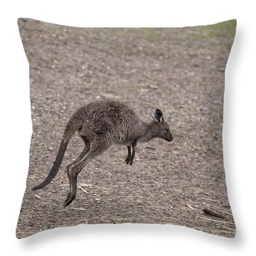 Hop Throw Pillow by Mike  Dawson