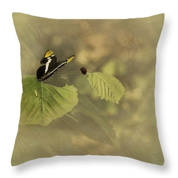Hop On My Back My Lady And We Will Fly Far Far Away Throw Pillow