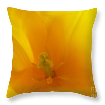 Hope And Glory Throw Pillow by Lingfai Leung