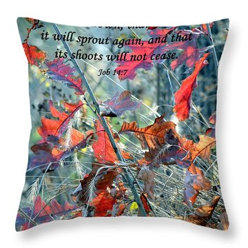Hope Throw Pillow by Deena Stoddard