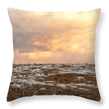Hope For The Desolate Throw Pillow
