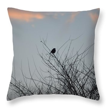 Hope Perched  Atop Throw Pillow