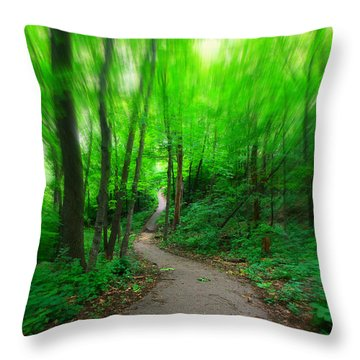 Hopkins Path Throw Pillow by Amanda Stadther