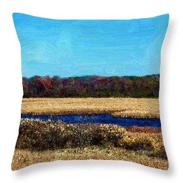 Horicon Marsh - Digital Oil Throw Pillow