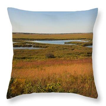 Horicon Marsh Throw Pillow