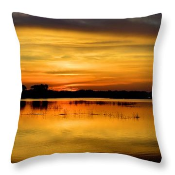 Horizons Throw Pillow by Bonfire Photography