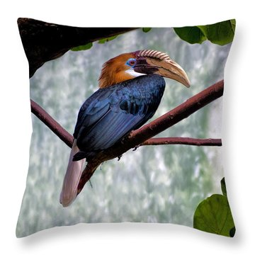 Hornbill In Paradise Throw Pillow