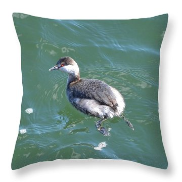 Horned Grebe Throw Pillow by James Petersen