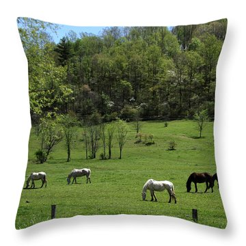 Horse 27 Throw Pillow