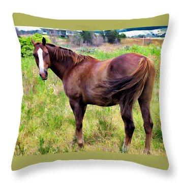 Throw Pillow featuring the photograph Horse 5 by Dawn Eshelman