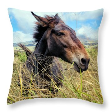 Throw Pillow featuring the photograph Horse 6 by Dawn Eshelman