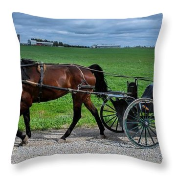 Horse And Buggy On The Farm Throw Pillow