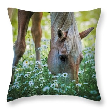 Horse And Daisies Throw Pillow by Paul Freidlund