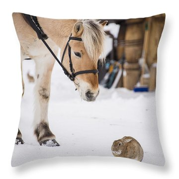 Horse And Rabbit Throw Pillow