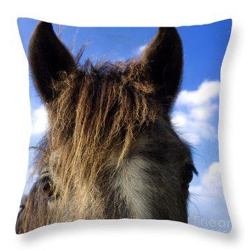 Horse Throw Pillow by Bernard Jaubert