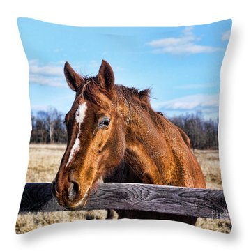 Throw Pillow featuring the photograph Horse Country by B Wayne Mullins