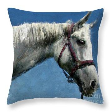 Horse  Throw Pillow by Daliana Pacuraru