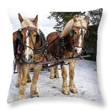 Horse Drawn Sleigh Throw Pillow by Edward Fielding