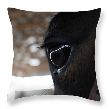 Horse Eye From Behind Throw Pillow