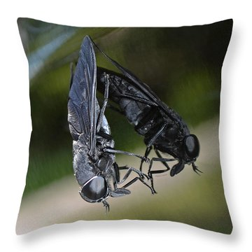 Throw Pillow featuring the photograph Horse Fly by DigiArt Diaries by Vicky B Fuller