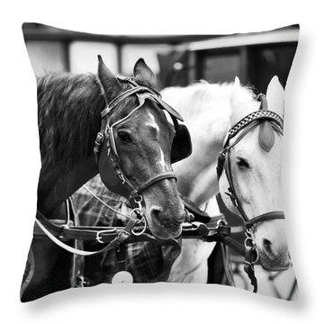 Horse Friends Throw Pillow by John Rizzuto