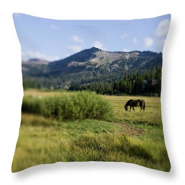 Horse Grazes In Pasture, California Throw Pillow