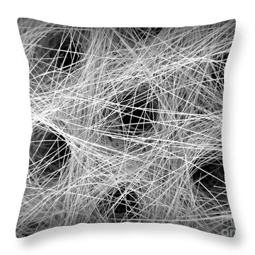 Horse Hair Throw Pillow by Clare Bevan