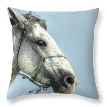 Throw Pillow featuring the photograph Horse Head-shot by Eti Reid