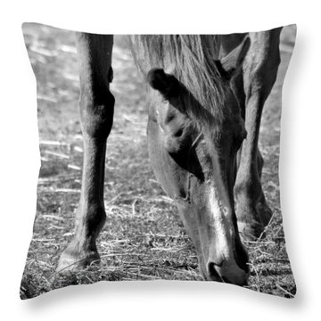 Horse In Black And White Throw Pillow by Art Block Collections