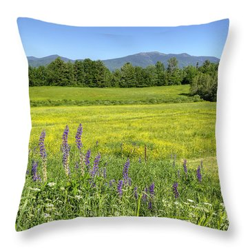 Horse In Buttercup Field Throw Pillow