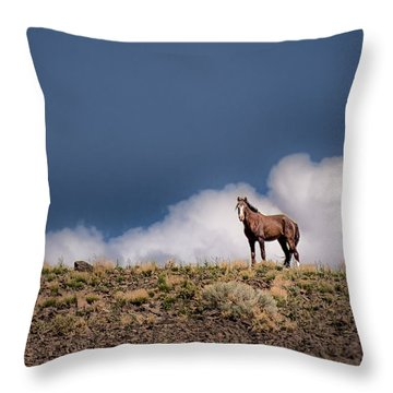 Throw Pillow featuring the photograph Horse In The Clouds  by Janis Knight