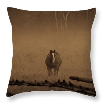 Horse In The Mist Throw Pillow
