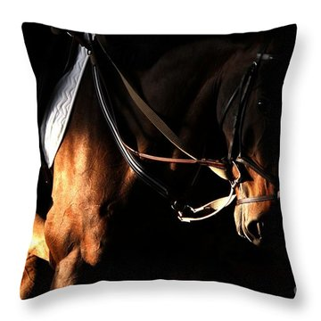 Horse In The Shade Throw Pillow
