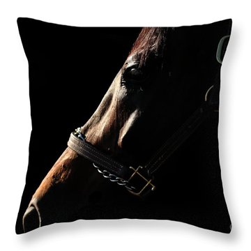 Horse In The Shadows Throw Pillow