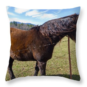 Horse Throw Pillow by Melinda Fawver