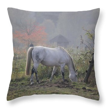 Horse On A Peaceful Day Throw Pillow