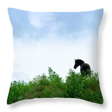 Throw Pillow featuring the photograph Horse On The Hill by Joan Davis