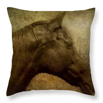 Horse Portriat Throw Pillow