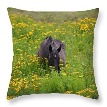 Horse Power Flower Power Throw Pillow by Bob Hislop