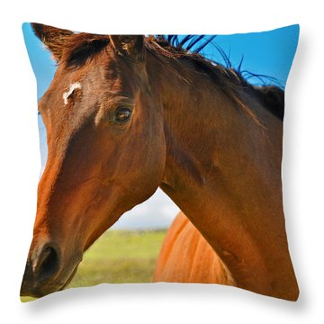 Throw Pillow featuring the photograph Horse by Sabine Edrissi