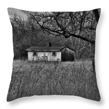 Horse Shed Throw Pillow