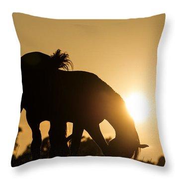 Horse Sunset Throw Pillow by Michael Mogensen