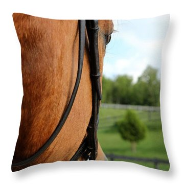 Horse View Throw Pillow