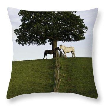 Horse Whisperers   Throw Pillow