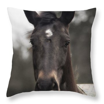Horse With Gentle Eyes Throw Pillow